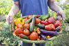 Vegetables are Nature's Original Nutritional Powerhouses – You Can Grow Them