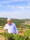 Making Kosher Wines in Italy and Israel Review - Terra di Seta and Capsouto Wineries
